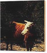 Lady Cow Wood Print