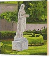 Lady Gandes Garden Wood Print
