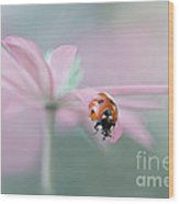 Lady In Pink Wood Print by Jacky Parker