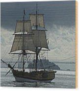 Lady Washington Wood Print