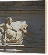 Lady With The Book Wood Print