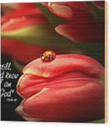 Ladybug And Tulip Wood Print by Linda Fowler