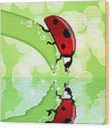 Ladybug On Leaf Looking At Water Reflection Wood Print