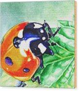 Ladybug On The Leaf Wood Print