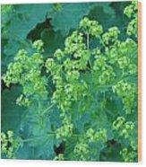 Lady's Mantel Wood Print