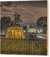 Lafayette Park Wood Print
