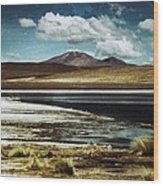 Lagoon Grass Bolivia Vintage Wood Print