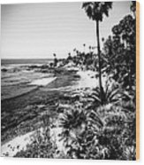 Laguna Beach Pacific Ocean Shoreline In Black And White Wood Print