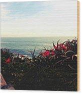 Laguna Beach Seascape Wood Print