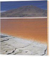Laguna Colorada, Altiplano Bolivia Wood Print