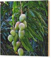 Lahaina Mango 1 Wood Print