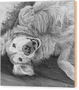 Laila Wood Print
