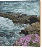 Lajolla Shore Wood Print