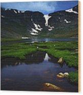 Lake 21 Wood Print