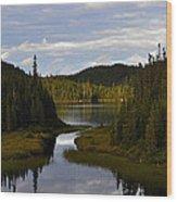 Lake 2 Wood Print