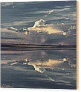 Lake Abert 12 Wood Print