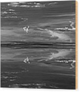 Lake Abert 4 Black And White Wood Print