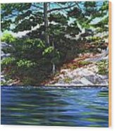 Lake Agnew Wood Print