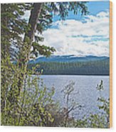 Lake Alva From National Forest Campground Site-yt Wood Print