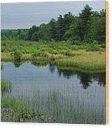 Lake And Bog Wood Print