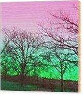 Lake Anita Wood Print by Kendra Sorum