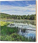 Lake At Acadia National Park Wood Print