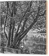 Lake Bench In Black And White Wood Print