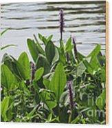 Lake Day Wood Print
