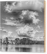 Lake De Soto Wood Print
