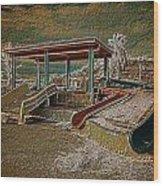 Lake Delores Water Park Wood Print