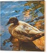 Lake Duck Vignette Wood Print
