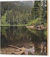 Lake Elizabeth Wood Print
