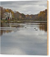 Lake Elkhorn Wood Print