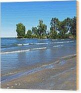 Lake Erie At Sheldon Marsh 2 Wood Print