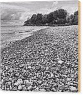 Lake Erie Coast Black And White Wood Print