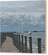 Lake Erie Gulls Wood Print