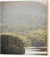 Lake Forest Wood Print