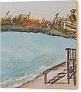 Lake Geneva Shoreline Wood Print