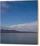 Lake Havasu Wood Print