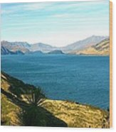 Lake Hawea Wood Print