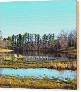 Lake Helen Lee Wood Print