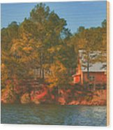 Lake House Wood Print by Brenda Bryant