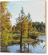 Lake Howard - Fall Color In The Park Wood Print