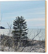 Lake Huron Landscape Wood Print