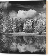 Lake In Black And White One Wood Print