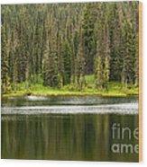 Lake In Mt Rainer National Park Wood Print