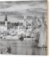 Lake In The Budapest City Wood Print