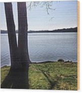 Lake in the Summer Wood Print