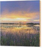 Lake Jackson Sebring Florida Panorama Wood Print