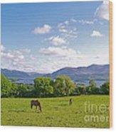 Lake Killarney From Aghadoe Hill County Kerry Wood Print